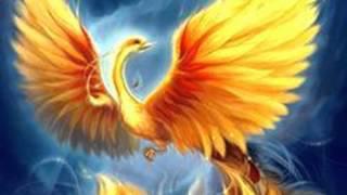 Христина Ивановска - Райска птица